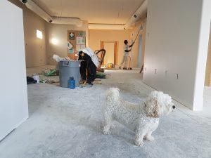 apartment-architecture-jiffyjunk